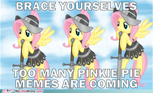 brace yourselves Memes fluttershy too many pinkie pies - 6784038912