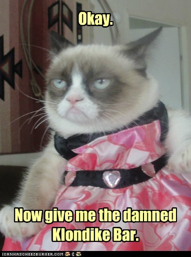 klondie bar,what would you do,captions,dress,Grumpy Cat,tard,Cats