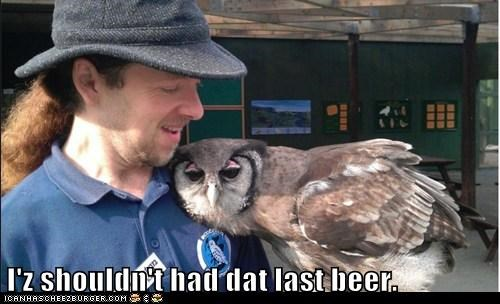 shouldnt-have,beer,leaning,drunk,owls,sick