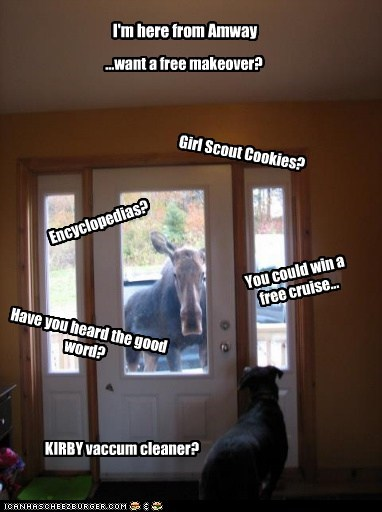salesman door dogs desperate moose - 6785423360