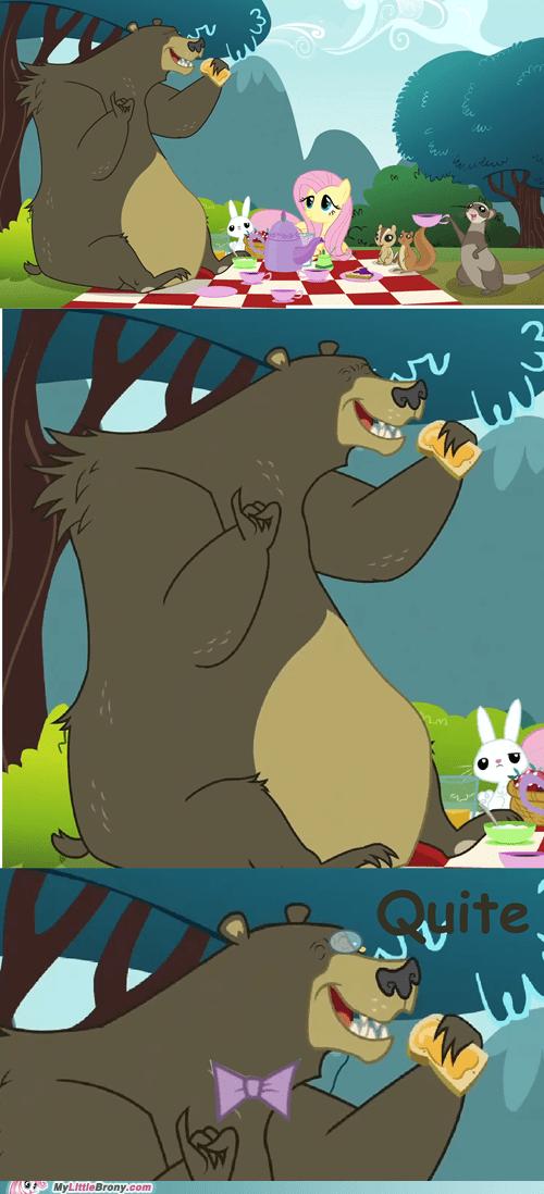 bear harry swanky animals - 6785601792