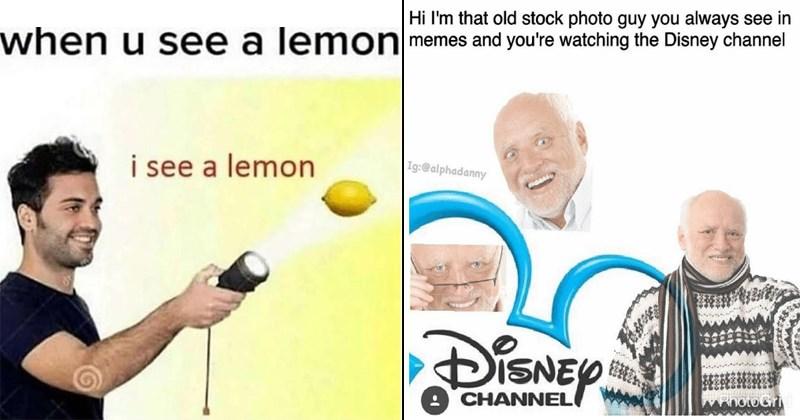 stock photo stock photo memes stock image stock image memes stock pics funny memes SpongeBob SquarePants spongebob memes distracted boyfriend wtf cringe - 6785797