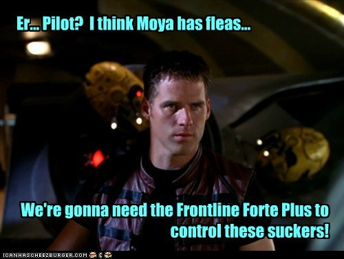 john chrighton,ben browder,fleas,moya,pilot,farscape