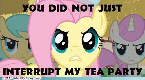 don't mess with her fluttershy interrupt tea party
