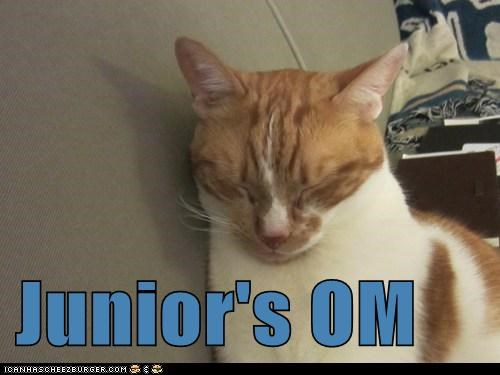 Junior's OM