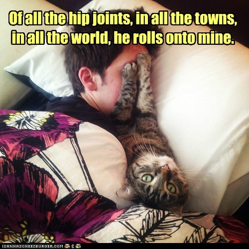 Of all the hip joints, in all the towns, in all the world, he rolls onto mine.