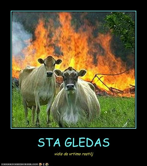 STA GLEDAS