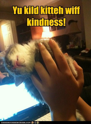 Yu kild kitteh wiff kindness!