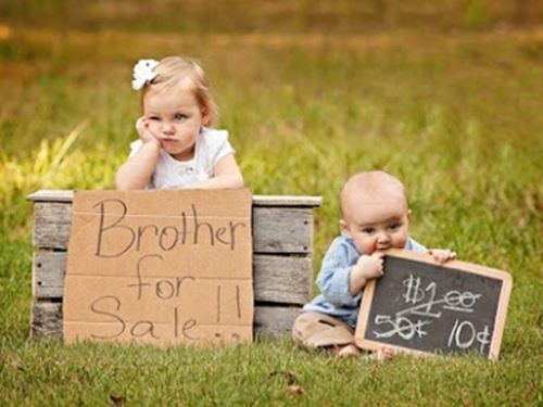 daww,siblings,brother for sale