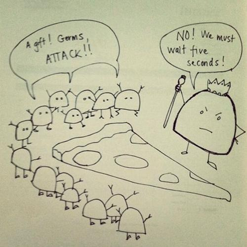 pizza,five second rule,germs,science