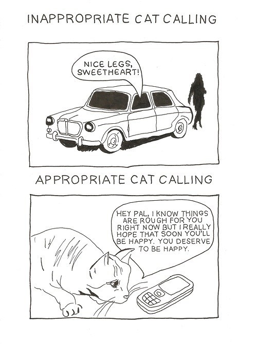 cat calling inappropriate literalism cat call appropriate double meaning Cats