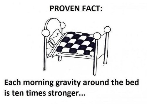 bed facts morning trufax