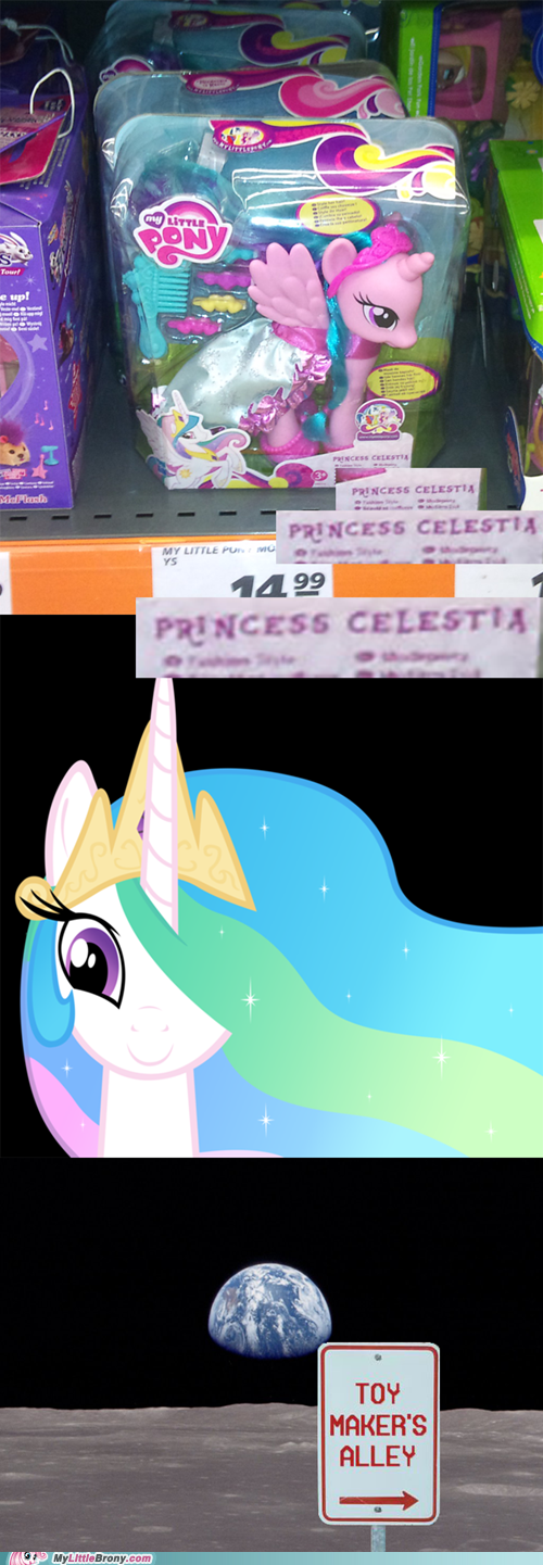 toys,IRL,princess celestia,to the moon