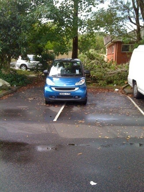 douchebag parkers,smart car,parking