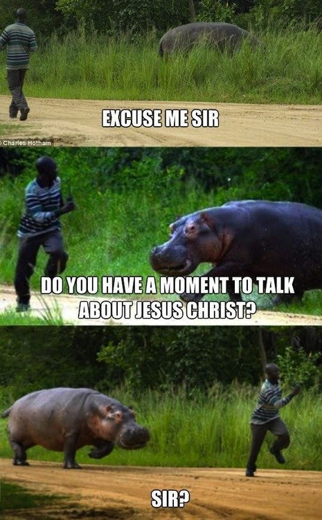 excuse me nope jesus christ chasing running door to door hippo - 6788968192
