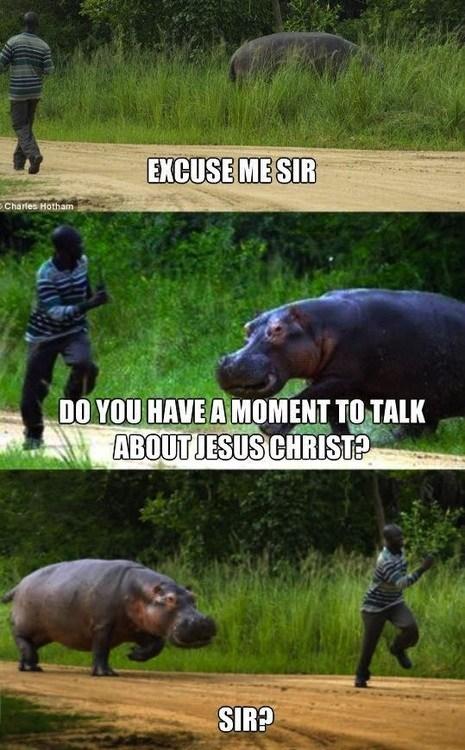 excuse me nope jesus christ chasing running door to door hippo - 6788968192