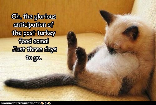 Oh, the glorious anticipation of the post turkey food coma! Just three days to go.