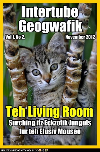 | | | | | | | | | | | | | | | | | | | | Intertube Geogwafik Vol 1, No 2. November 2012 Teh Living Room Surching itz Eckzotik Junguls fur teh Elusiv Mousee