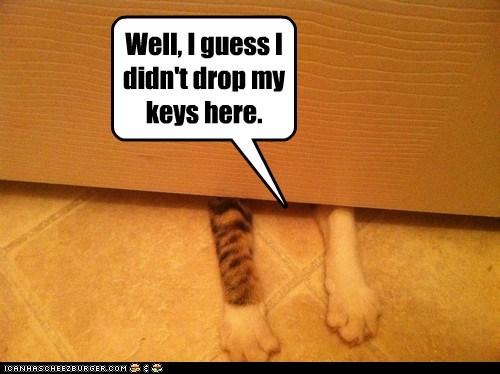 Well, I guess I didn't drop my keys here.