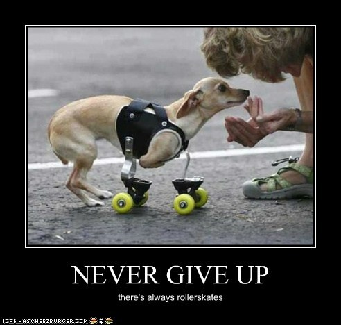NEVER GIVE UP there's always rollerskates