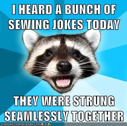 longform-ish variations on a theme Lame Pun Coon seamlessly strung sewing - 6792404992