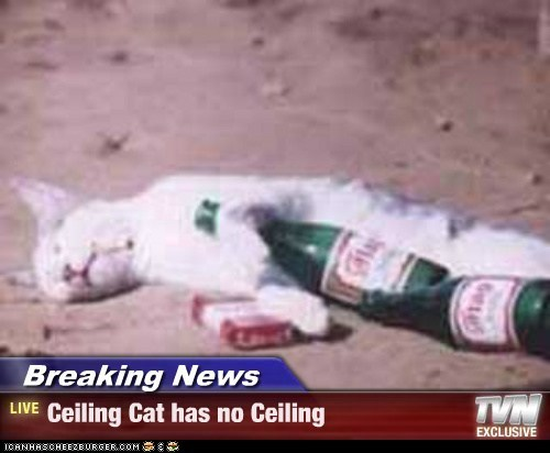 Breaking News - Ceiling Cat has no Ceiling