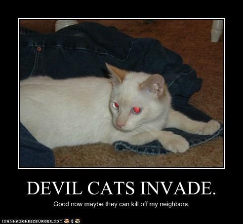 DEVIL CATS INVADE.