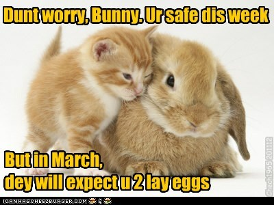 But in March, dey will expect u 2 lay eggs Dunt worry, Bunny. Ur safe dis week Chech1965 201112