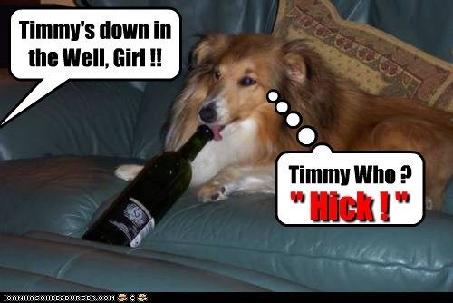 "Timmy's down in the Well, Girl !! Timmy Who ? "" Hick ! """