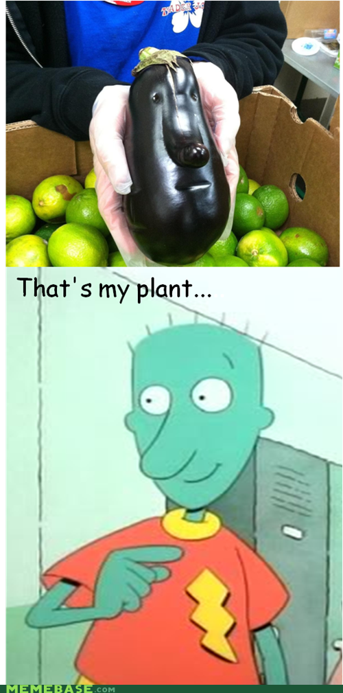 skeeter cartoons plant - 6793406464