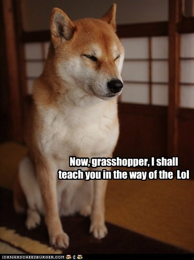 Now, grasshopper, I shall teach you in the way of the Lol
