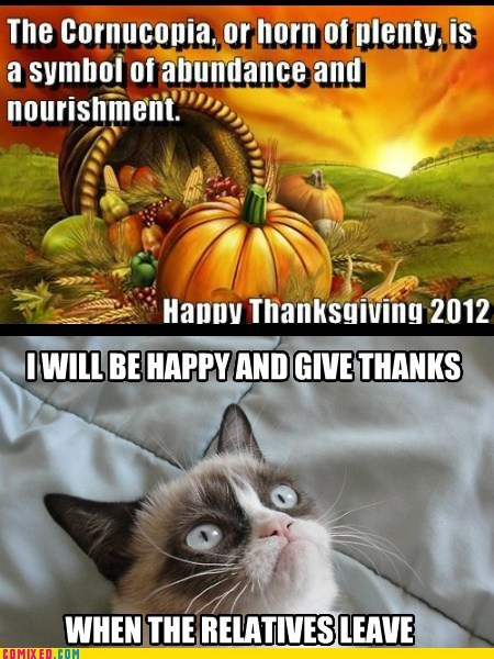 thanksgiving cornucopia black friday holiday Grumpy Cat tard - 6795118080