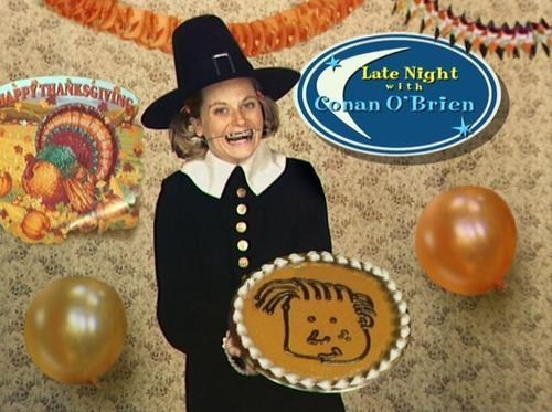 thanksgiving actor Amy Poehler holiday funny - 6795237632