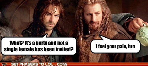 i feel your pain,bro,dwarves,The Hobbit,sausage fest,Party,women