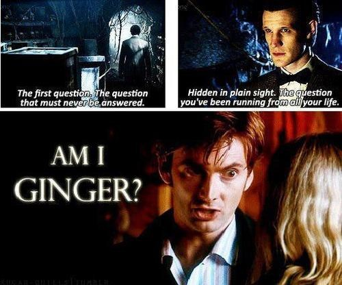 ginger question David Tennant the doctor Matt Smith doctor who - 6796006912