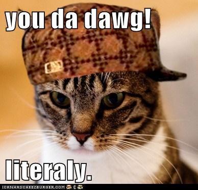 you da dawg!  literaly.
