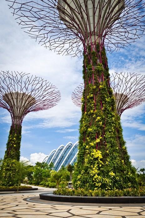 garden design solar power singapore - 6796198912