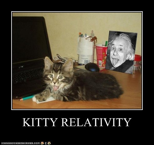 KITTY RELATIVITY