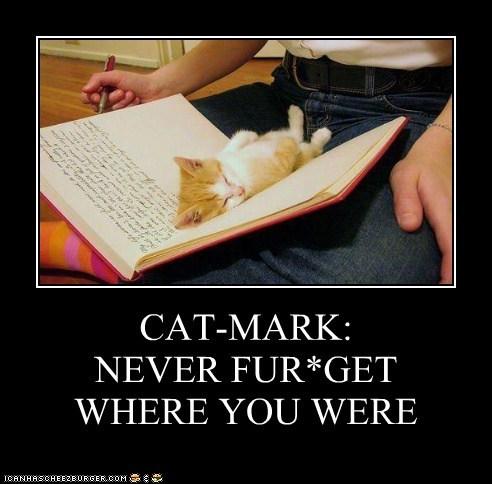 CAT-MARK: NEVER FUR*GET WHERE YOU WERE