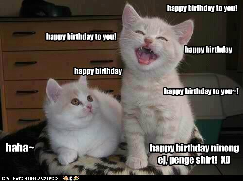 happy birthday memes with two cute kittens