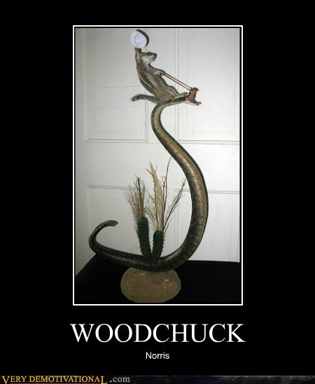 taxidermy woodchuck chuck norris snake - 6796967168