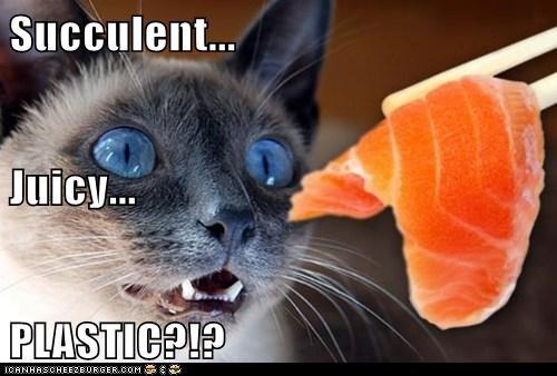 Succulent... Juicy... PLASTIC?!?