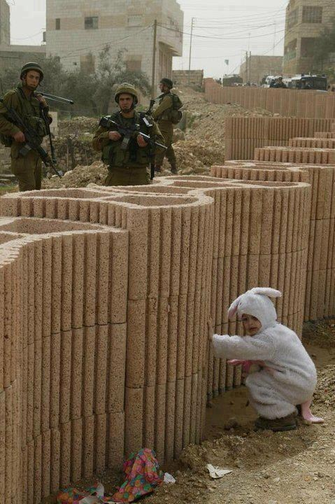 military gaza Israel - 6799146240