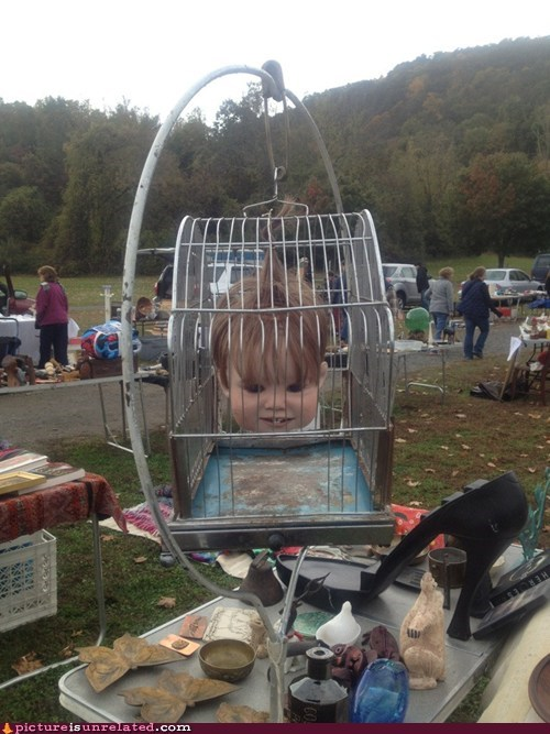 creepy,head,bird cage,yard sale