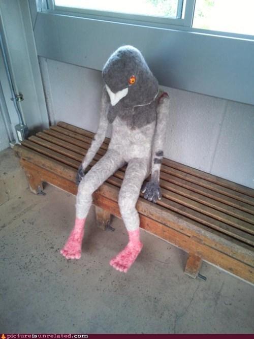 pigeon man suit crumbs - 6799250176