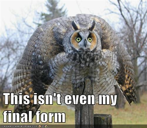 wtf Owl final form - 6799819776