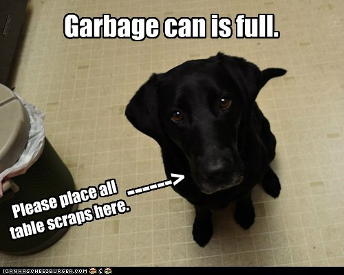 Garbage can is full. Please place all table scraps here. ------>
