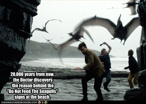 brian williams the doctor chasing seagulls Mark Williams Matt Smith doctor who - 6801920000