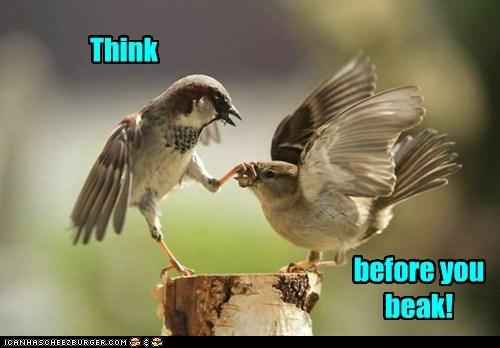 Think before you beak!