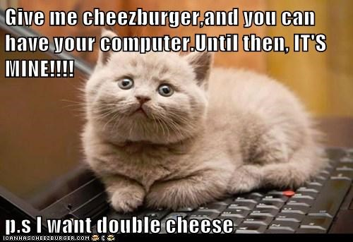 Cheezburger Image 6803233536